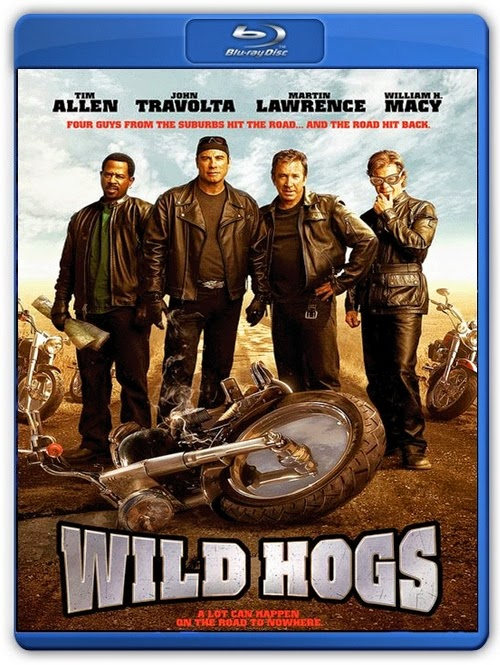 Wild Hogs 2007 Dual Audio [Hindi Eng] BRRip 480p 300mb